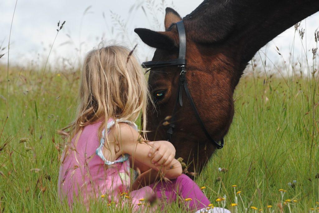 Pferd erfahrung mit sex Flickr: Discussing