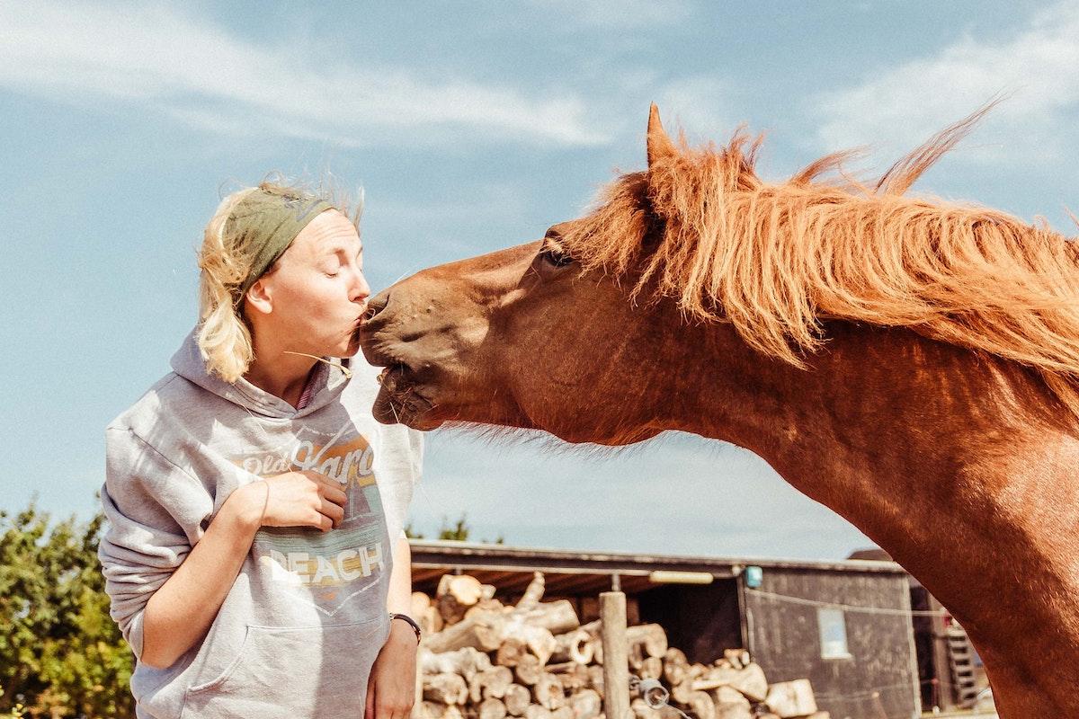 Kommt frau pferd in Kaley Cuoco